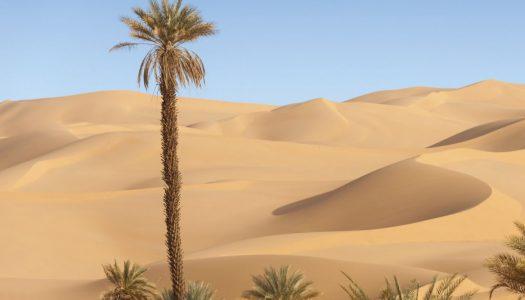 Adventure at Al Enna
